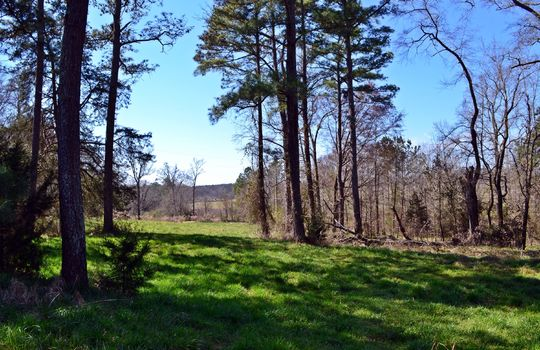 Hwy 151 Jefferson SC Lynches Riverfront Farm (44)
