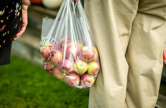 Apple Picking (13 of 30)