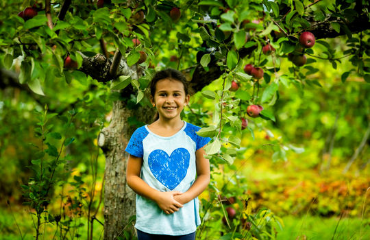 Apple Picking (25 of 30)