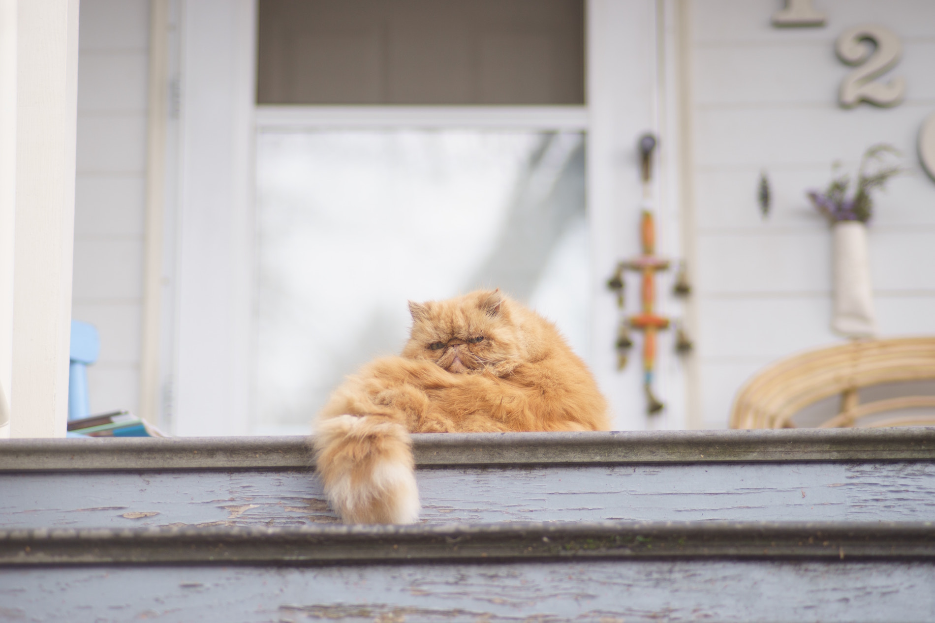 8 Tips to Spruce Up Your Front Porch