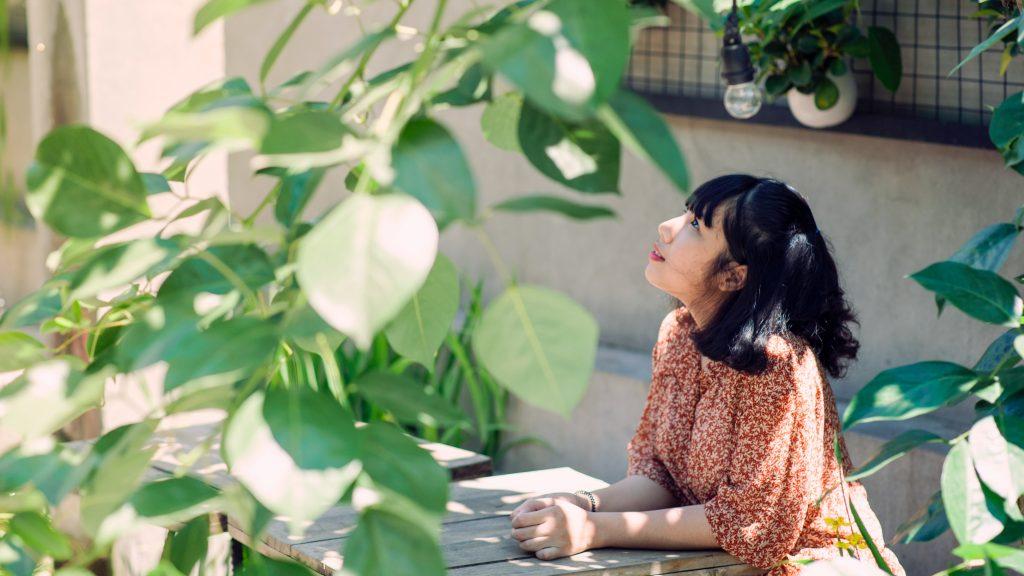 Plants that add shade