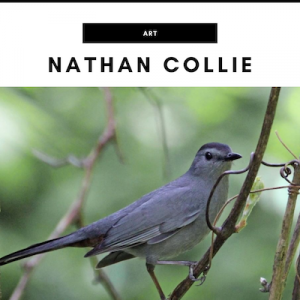 Nathan Collie - Nashville, TN Local Gifts