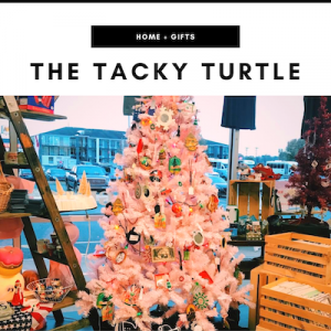Tacky Turtle - Nashville, TN Local Gifts