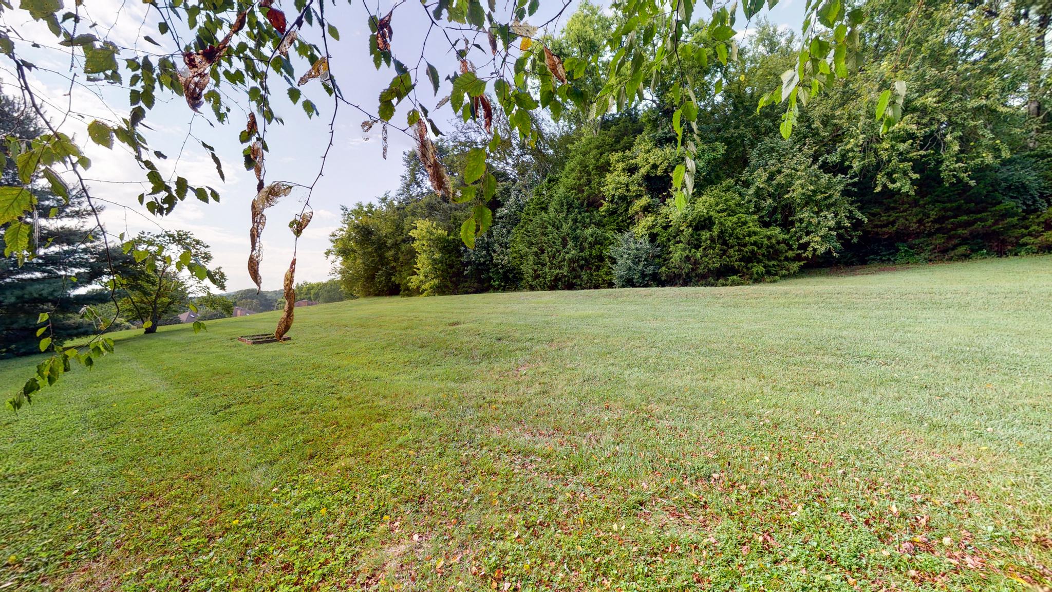 1620 Callie Way Drive - Franklin, TN Real Estate